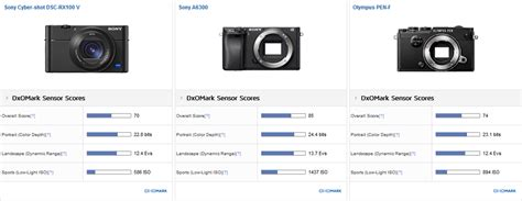 Sony RX100 V sensor review: High-end compact with