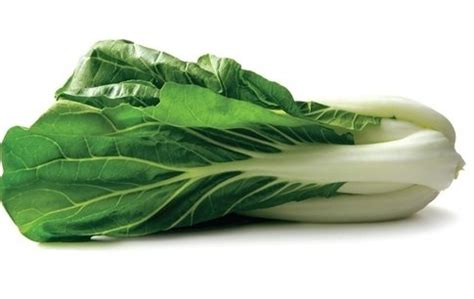 What are the different ways to cook Pak Choi? - Quora